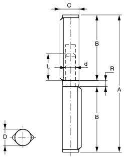 Balama sudabila pe bucsa FAAC 572.6