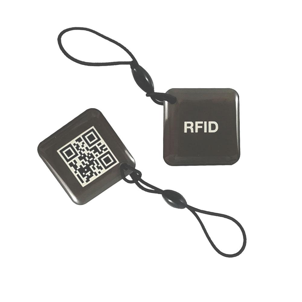 Tag de proximitate RFID DinsafeR DRFT01A, 125 KHz, 2 taguri imagine spy-shop.ro 2021